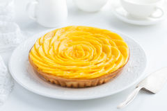 Tarta deliciosa del mango fotos de archivo