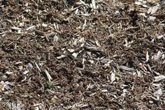 Tarta Drzewnej barkentyny tekstura fotografia stock