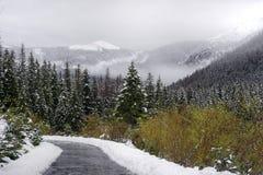 Tarta Mountain Royalty Free Stock Images