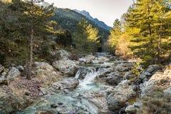 Tartagine river in Balagne region of Corsica Royalty Free Stock Photos