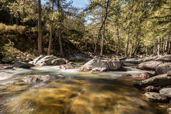 Tartagine river flows over colourful pebbles in Corsica Royalty Free Stock Images