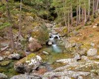 Tartagine rzeka blisko Mausoléo w Corsica fotografia stock