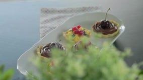 Tartalets stock footage