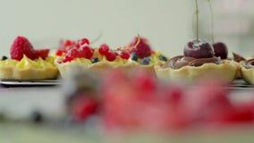 Tartalets stock video footage