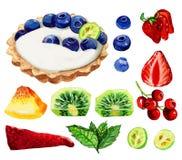 Tartalettes用蓝莓、草莓和薄荷叶在白色 免版税库存照片