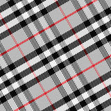 Tartan écossais 1 de modèle sans couture de vecteur Photographie stock