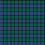 Tartan. This Campbell clan tartan has been approved by the Duke of Argyll Royalty Free Stock Image
