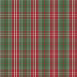 Tartan check plaid texture seamless pattern in red and green. Stock Image