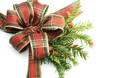 Tartan christmas ribbon. Tartan christmas bow isolated on white with pine sprig Stock Image