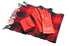 tartan för scarf för handskeläderhandväska röd Royaltyfri Fotografi