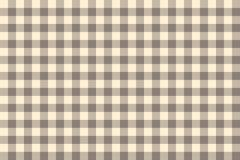 Tartan gris écossais traditionnel Image libre de droits