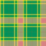 Tartan, plaid pattern. Seamless vector. Royalty Free Stock Photography