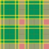Tartan, plaid pattern. Seamless vector. royalty free illustration