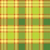 Tartan, plaid pattern. Seamless vector. Royalty Free Stock Photo