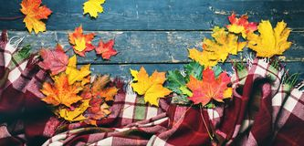 Tartan plaid yellow autumn leaves old wooden plank. Tartan plaid yellow autumn leaves on black old vintage wooden planks top view background long banner Royalty Free Stock Photo