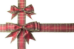 Gift ribbon Royalty Free Stock Photo