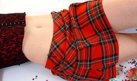 Tartan Skirt In Colour Stock Image