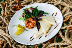 Tartar with salmon Stock Images