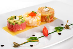 Tartar with tuna fish Royalty Free Stock Photo