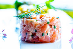 Tartare of fresh salmon. Lying on a white flat plate Royalty Free Stock Photography