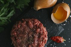 Tartare steak. Beef raw chopped meat with spices, herbs and egg yolk. Fresh, spicy, delicious, gourmet meal on dark Royalty Free Stock Images