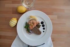 Tartaro di color salmone fotografie stock