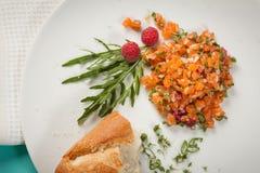 Tartaro di color salmone Fotografia Stock
