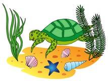 Tartaruga acquatica nell'oceano Illustrazione Vettoriale