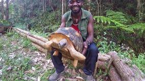 Tartaruga africana della tenuta dell'uomo e explaning nella casetta di vakona stock footage