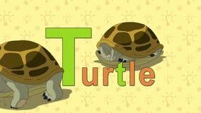 Tartaruga Alfabeto inglese dello ZOO - lettera T illustrazione di stock
