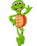 Tartaruga bonito dos desenhos animados que dá o polegar acima Foto de Stock