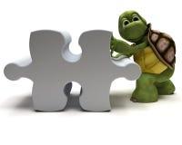 Tartaruga com enigma de serra de vaivém Fotos de Stock