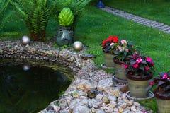 A tartaruga da lagoa floresce a água fotos de stock
