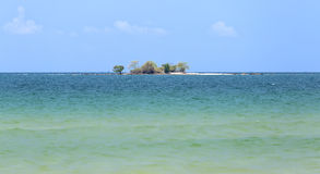 Tartaruga de Hon na ilha de Phu Quoc, Vietname Foto de Stock