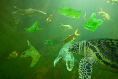 A tartaruga de mar come o oceano do saco de plástico, conceito da poluição imagens de stock
