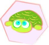 Tartaruga del bambino Immagini Stock Libere da Diritti