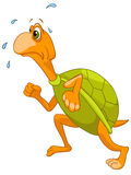 Tartaruga del personaggio dei cartoni animati Fotografia Stock Libera da Diritti