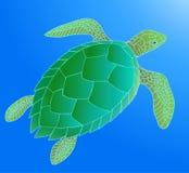 Tartaruga di mare Fotografia Stock