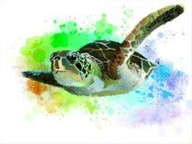 Tartaruga di mare royalty illustrazione gratis