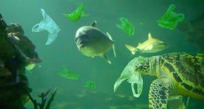 Tartaruga di mare mangiare l'oceano del sacchetto di plastica, concetto di inquinamento fotografia stock