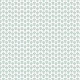 Tartaruga di mare strutturata verde isolata su bianco Fotografia Stock