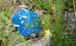 A tartaruga famosa de Kruje, pintava a euro- bandeira de união em seu shell Fotografia de Stock Royalty Free