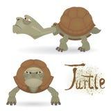Tartaruga irritada dos desenhos animados Imagem de Stock Royalty Free