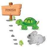 Tartaruga, lebre, raça, vetor, ilustração ilustração royalty free