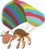 Tartaruga na perseguição Fotografia de Stock Royalty Free