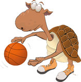 Tartaruga o jogador de basquetebol Foto de Stock