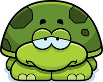 Tartaruga pequena triste Fotos de Stock Royalty Free