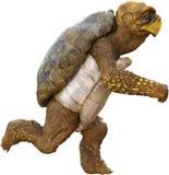 Tartaruga running rápida dos desenhos animados Imagens de Stock