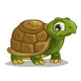 Tartaruga sveglia del fumetto Fotografia Stock Libera da Diritti