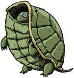 Tartaruga tímida ilustração do vetor